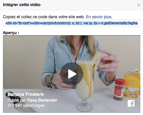 Code source video Facebook - Formation reseaux sociaux