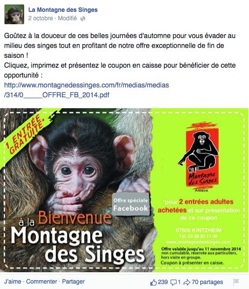La montagne des singes 2